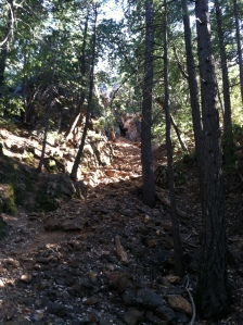 Silverado Mine 1